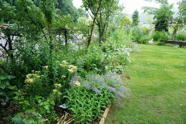 雨に濡れた庭は美しい_e0365880_09164719.jpg