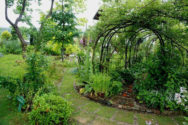 雨に濡れた庭は美しい_e0365880_09171289.jpg