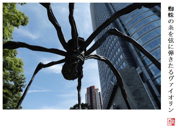 蜘蛛の糸を弦に弾きたるヴァイオリン_a0248481_22225258.jpg