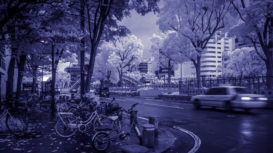 Come Rain Or Come Shine_d0353489_17094030.jpg