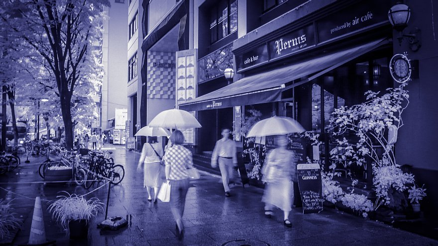 Come Rain Or Come Shine_d0353489_17094747.jpg