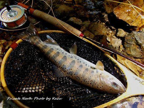 昨日の釣り_d0261148_19462231.jpg