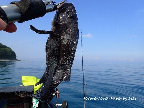 Sekiさんの釣り_d0261148_20013422.jpg
