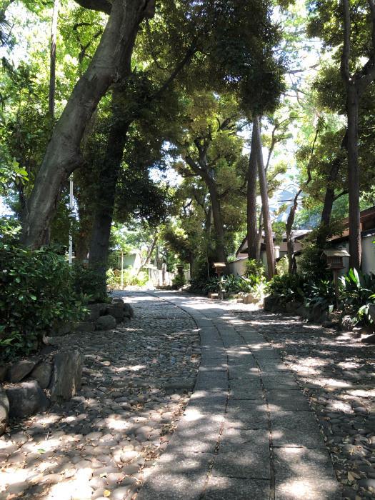ぶらりお散歩♪代々木八幡〜新宿まで_d0152261_20531843.jpg