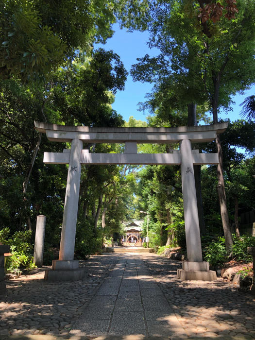 ぶらりお散歩♪代々木八幡〜新宿まで_d0152261_20532066.jpg