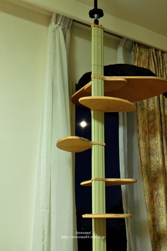 今夜はストロベリームーン *お月様、追記しました_e0359481_18031029.jpg