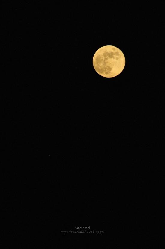 今夜はストロベリームーン *お月様、追記しました_e0359481_21223223.jpg