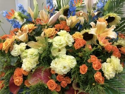 元気の出る黄色の花_d0030894_16502217.jpg