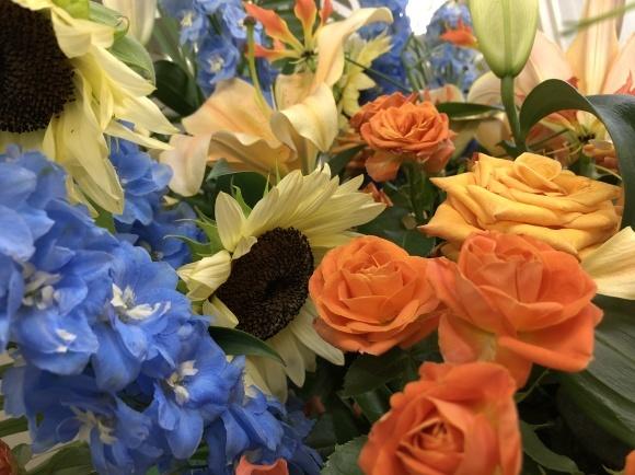 元気の出る黄色の花_d0030894_16581447.jpg