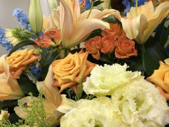 元気の出る黄色の花_d0030894_16582042.jpg