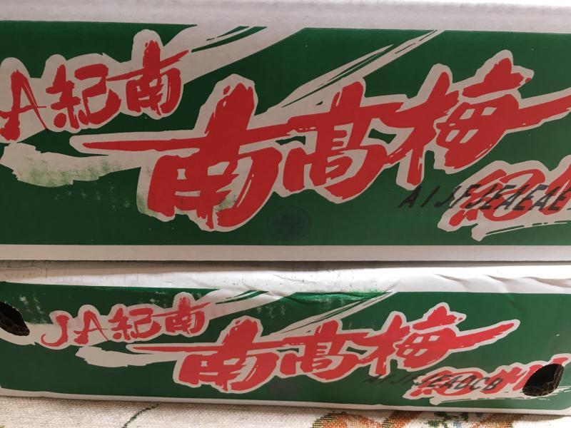 南高梅 梅ッピちゃん_c0195496_16514823.jpg