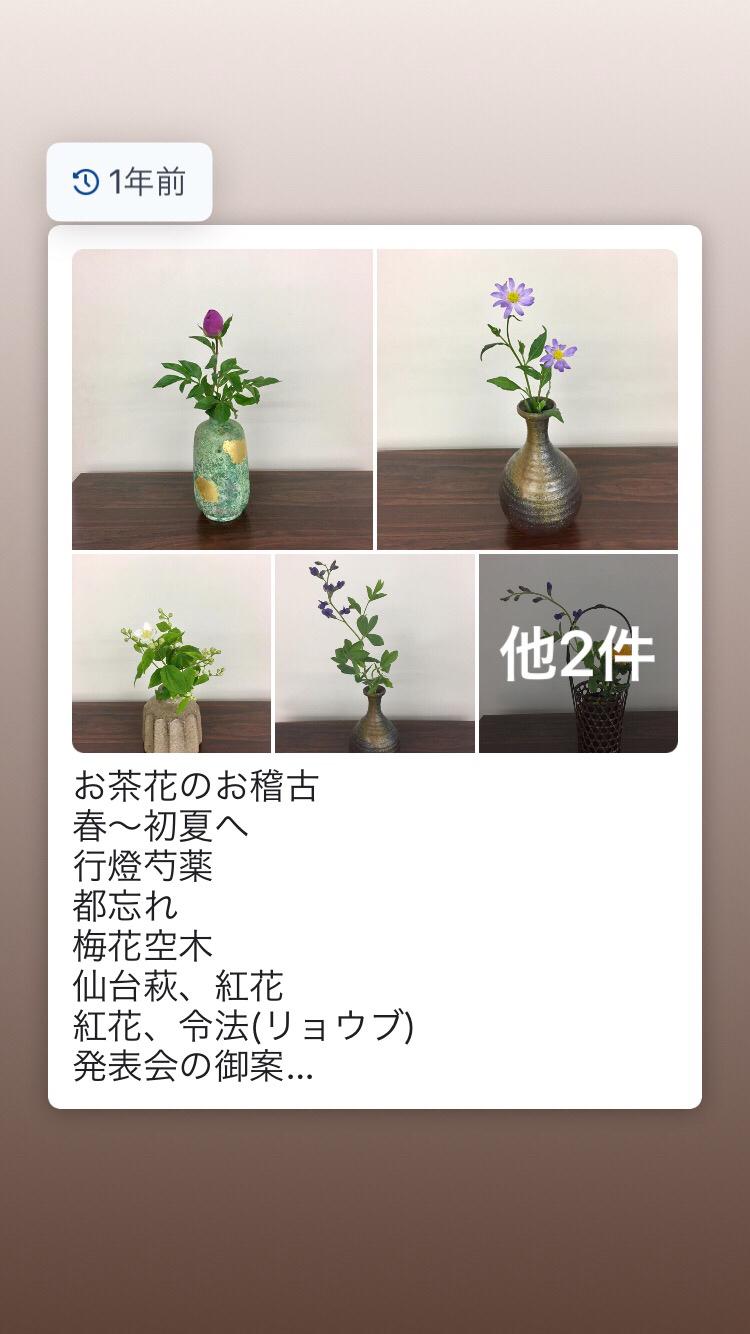 お茶花、盛花のお稽古_c0195496_17373153.jpg