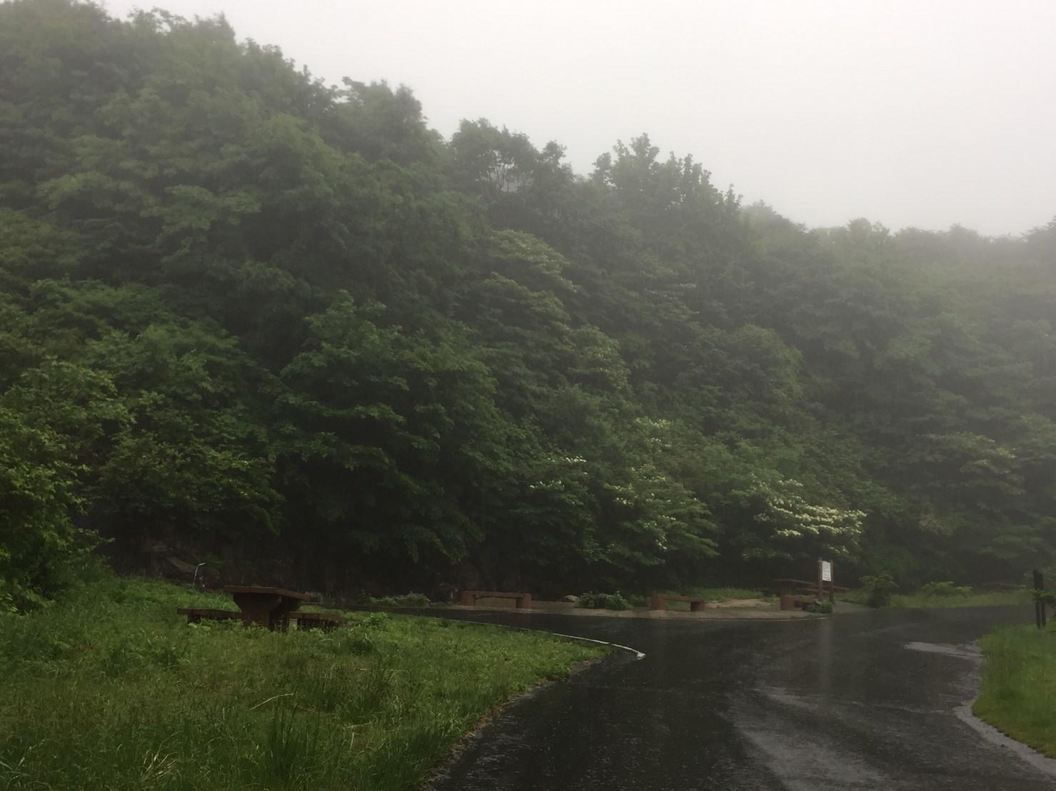 河合谷高原・水とのふれあい広場の水 ・田村牧場_e0115904_13143863.jpg