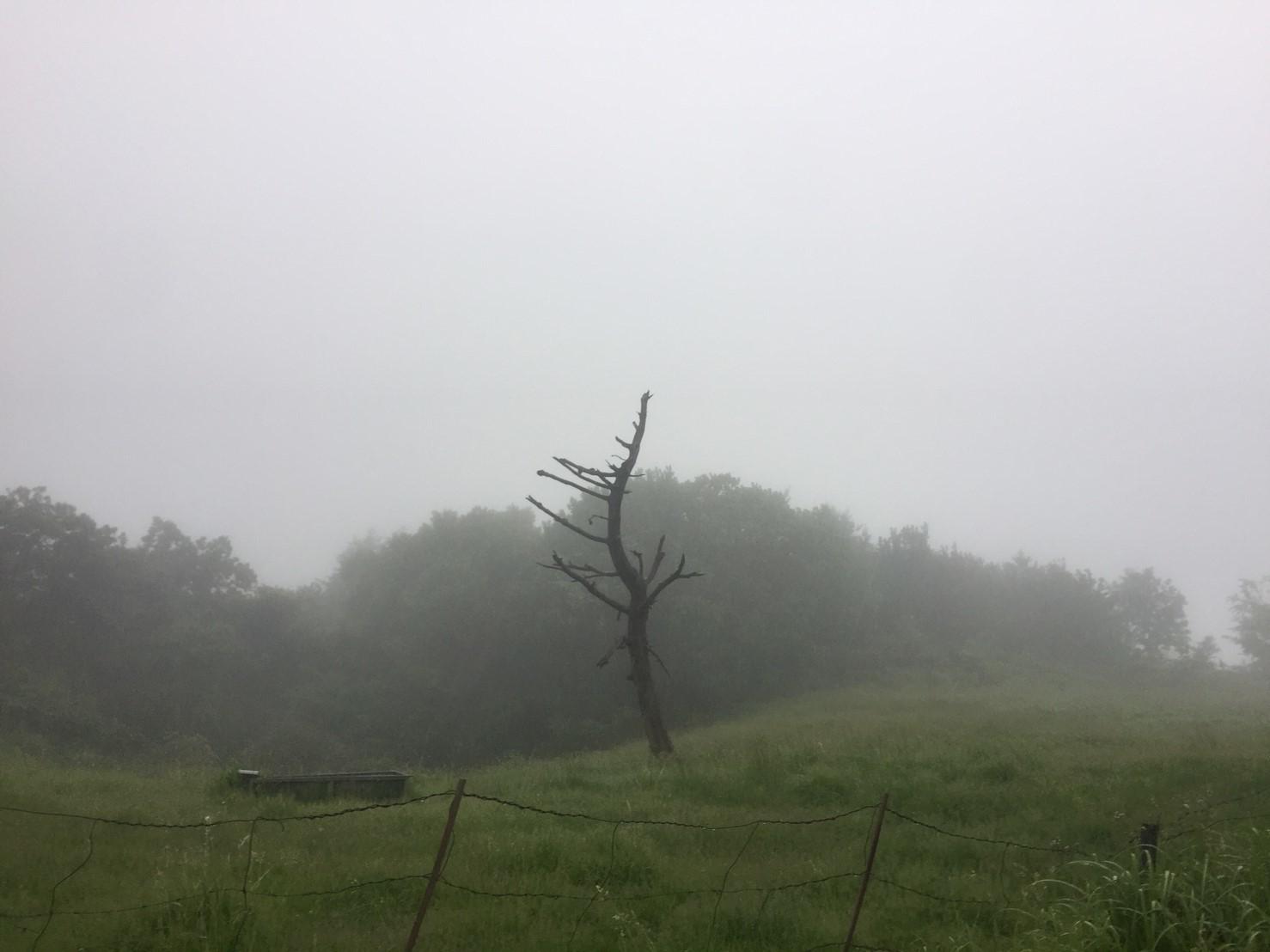 河合谷高原・水とのふれあい広場の水 ・田村牧場_e0115904_17325671.jpg