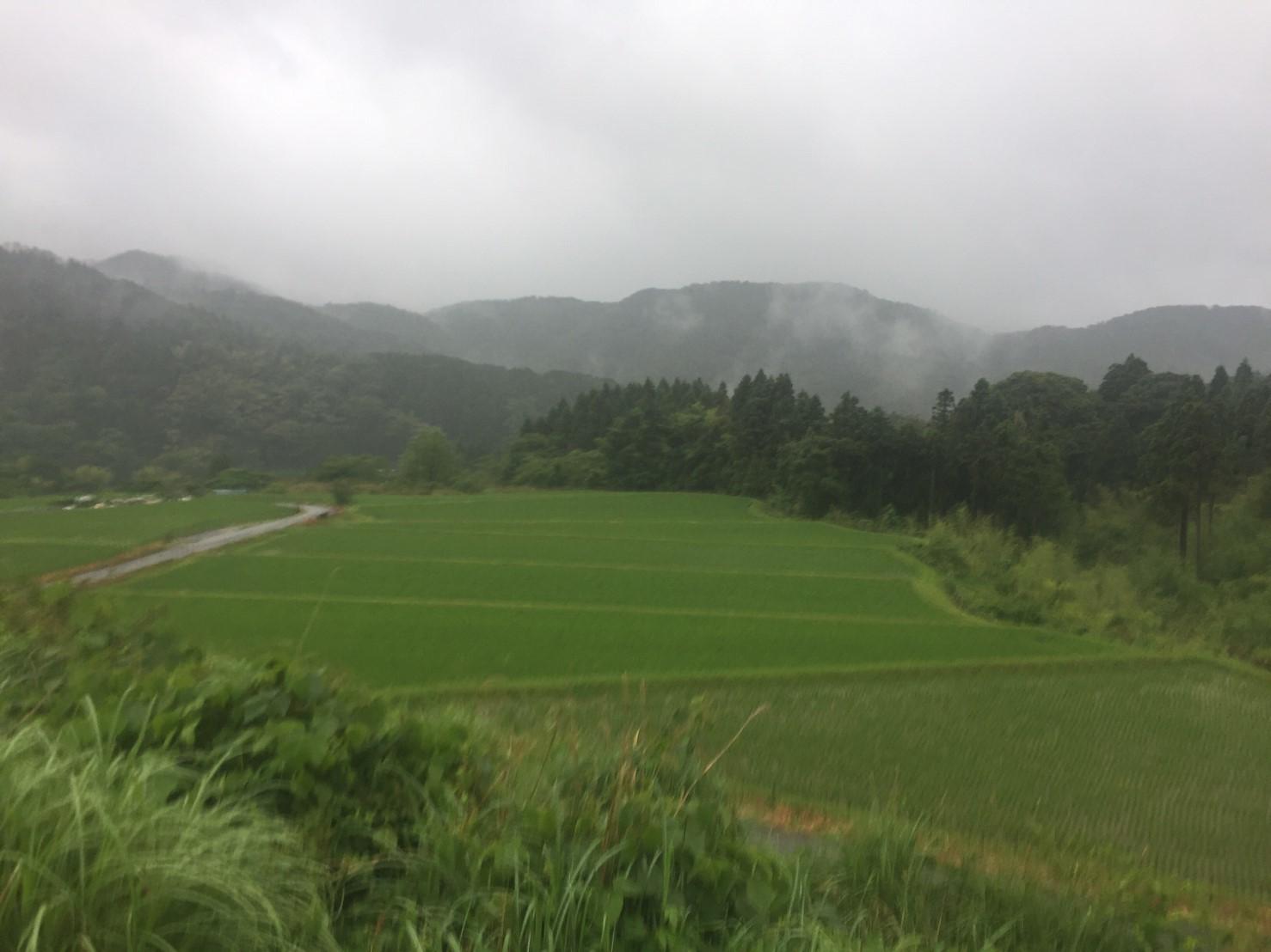 河合谷高原・水とのふれあい広場の水 ・田村牧場_e0115904_17361202.jpg