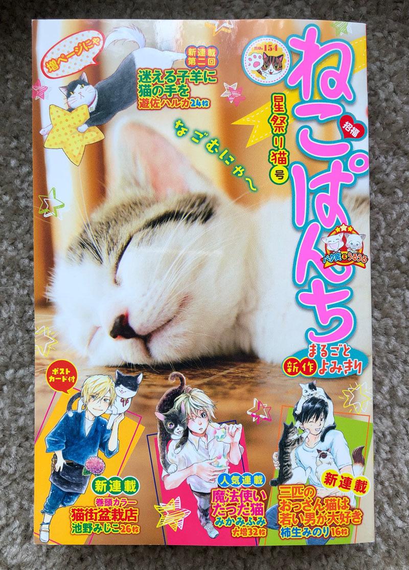 ねこぱんち「猫の目通り商店街」_d0118933_14045418.jpg