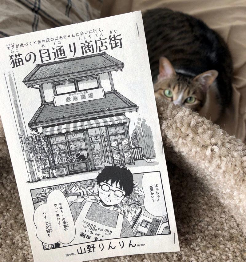 ねこぱんち「猫の目通り商店街」_d0118933_14045823.jpg