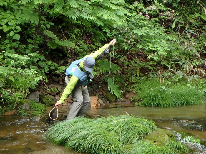 長男、谷でアマゴを釣る_c0120834_16383691.jpg