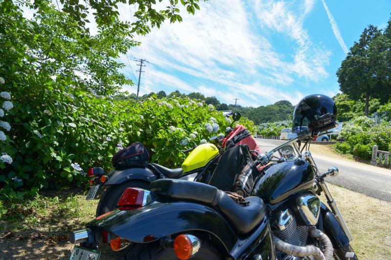 粟井神社 2019 バイク_d0246136_18394973.jpg