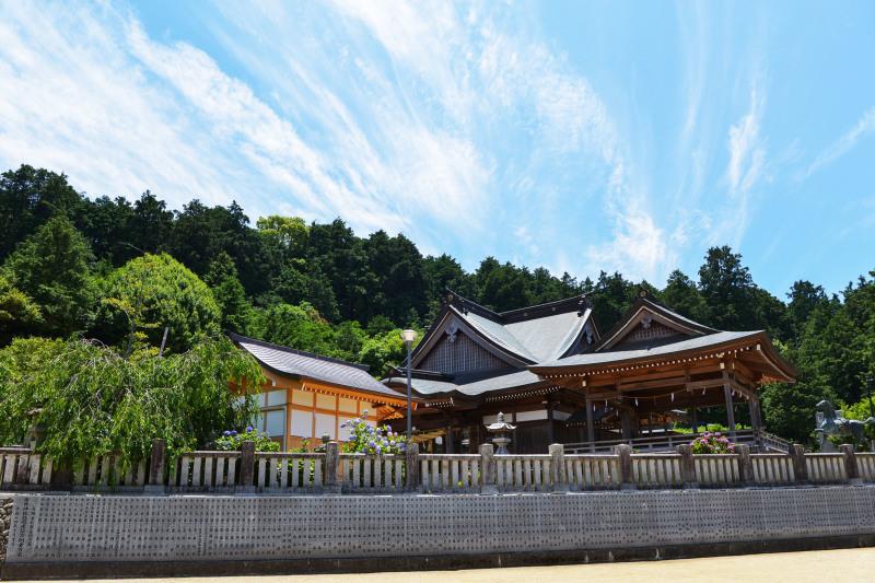 粟井神社 2019 アジサイの神社_d0246136_19030869.jpg