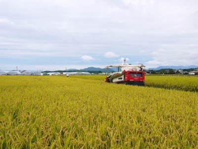 無農薬栽培の発芽玄米、雑穀米、米粉大好評発売中!「健康農園」さんの令和元年度の米作り!苗床の様子!_a0254656_18211231.jpg