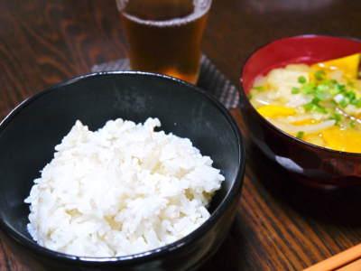 無農薬栽培の発芽玄米、雑穀米、米粉大好評発売中!「健康農園」さんの令和元年度の米作り!苗床の様子!_a0254656_18504773.jpg