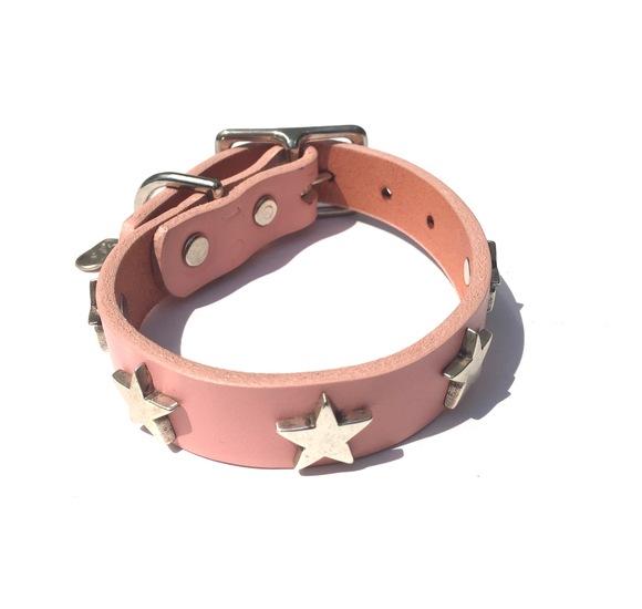 Dog La Star COLLAR ドグラ スター カラー 3/4インチ(2cm幅) 別注10インチ_d0217958_12291565.jpg