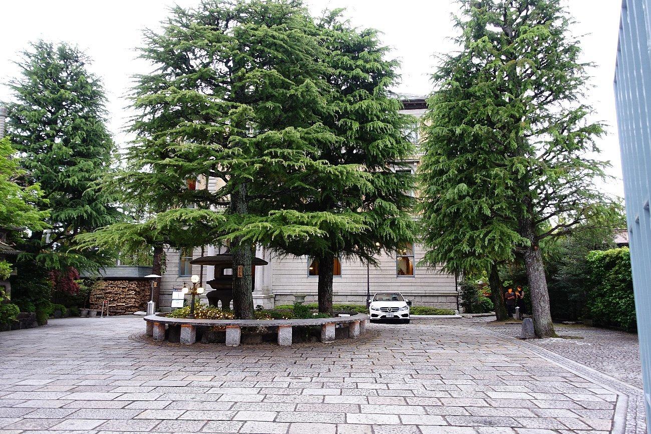 円山公園から八坂神社へ_c0112559_07324897.jpg