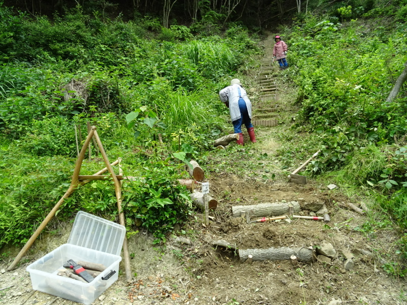 階段補修・草刈り・間伐 里山作業の継続・・・孝子の森_c0108460_18373438.jpg