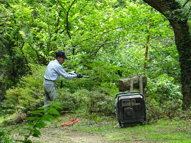 階段補修・草刈り・間伐 里山作業の継続・・・孝子の森_c0108460_18373594.jpg