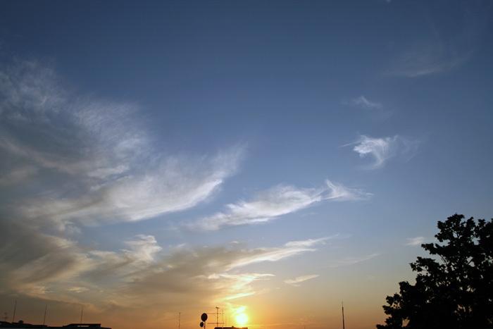 空・模様_12_d0016587_17303899.jpg