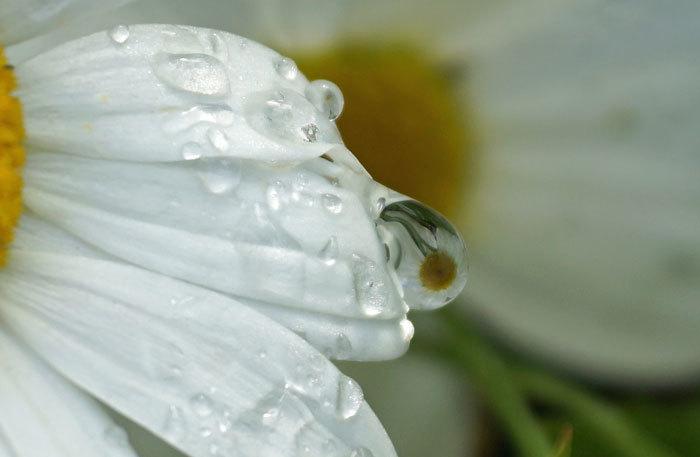 水滴・・3_d0162994_06343293.jpg