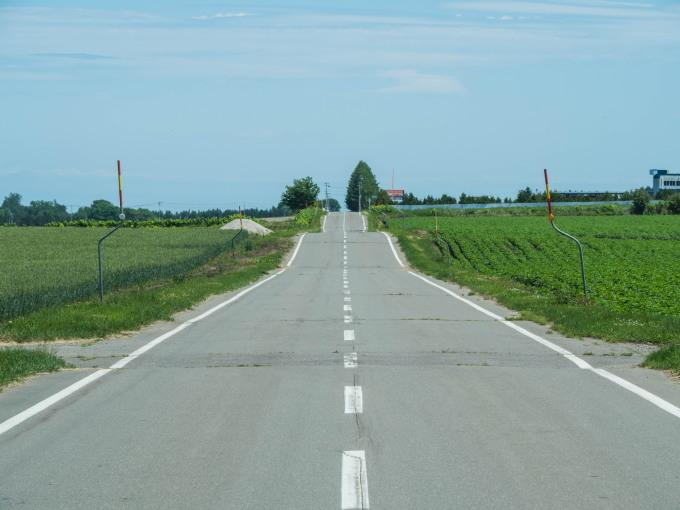 真っ平に見える村の農村風景も良く見ると少しうねってますね!_f0276498_21005912.jpg