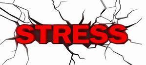 ストレス発散には運動がおススメです!_b0179402_15222914.jpg
