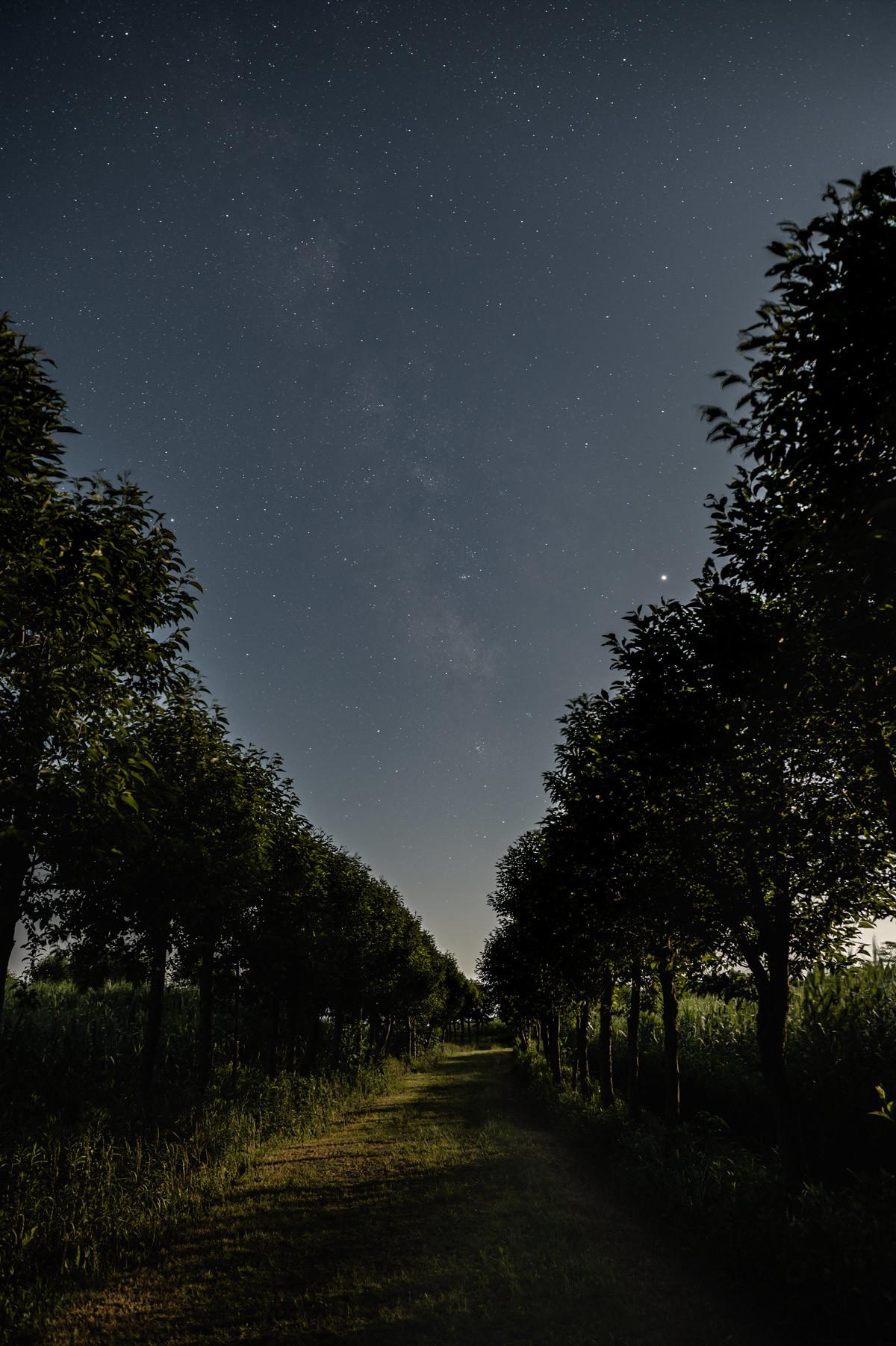 月明かりの中を徘徊す_a0041722_20414634.jpg