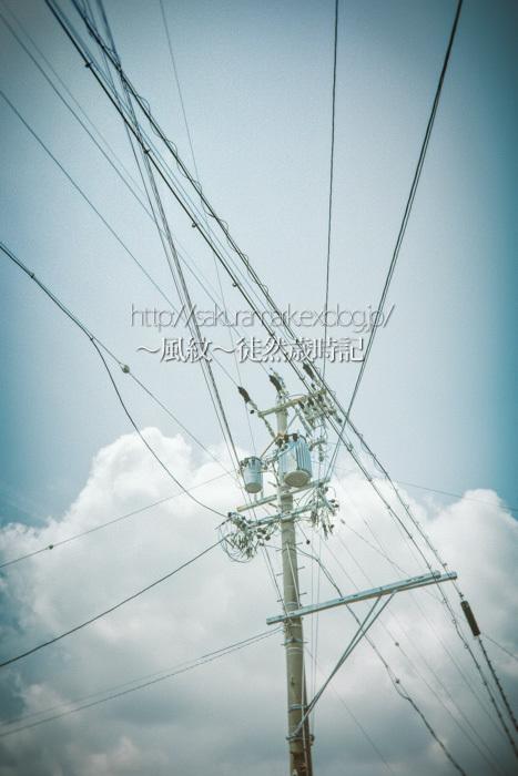 梅雨の晴れ間と湧き立つ雲。_f0235723_20371986.jpg