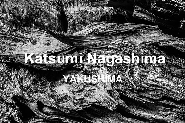 永嶋勝美写真展「YAKUSHIMA(屋久島)」_b0194208_15214226.jpg