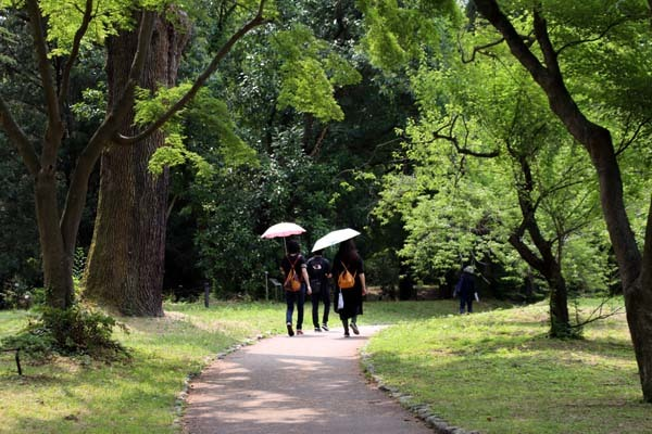 府立植物園 夏花いっぱい_e0048413_18130755.jpg