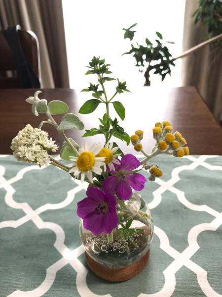 花のキロク。2._b0157216_23352720.jpg