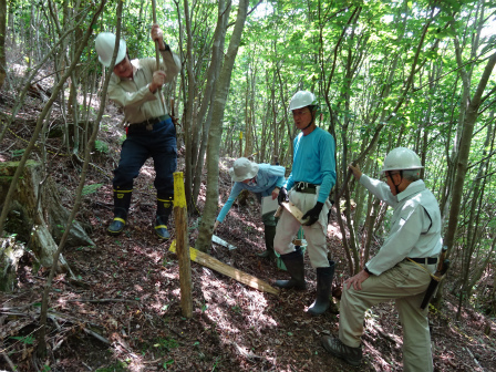 みんなの森活動日記_d0105723_08561661.jpg