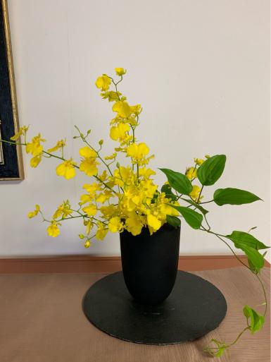I love yellow!_c0223630_12181269.jpg