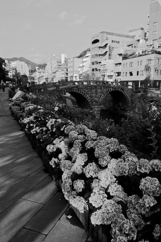 眼鏡橋と紫陽花 モノクロ_f0315034_13494952.jpg