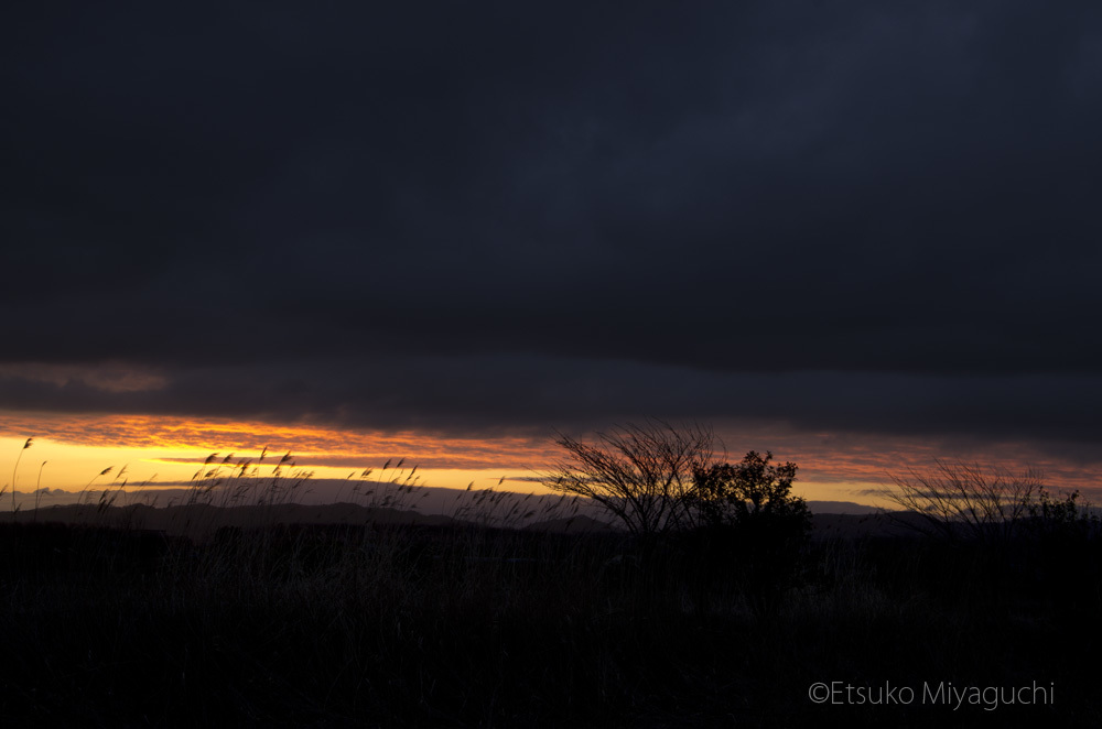 厚い雲の切れ間から_f0152939_18200973.jpg