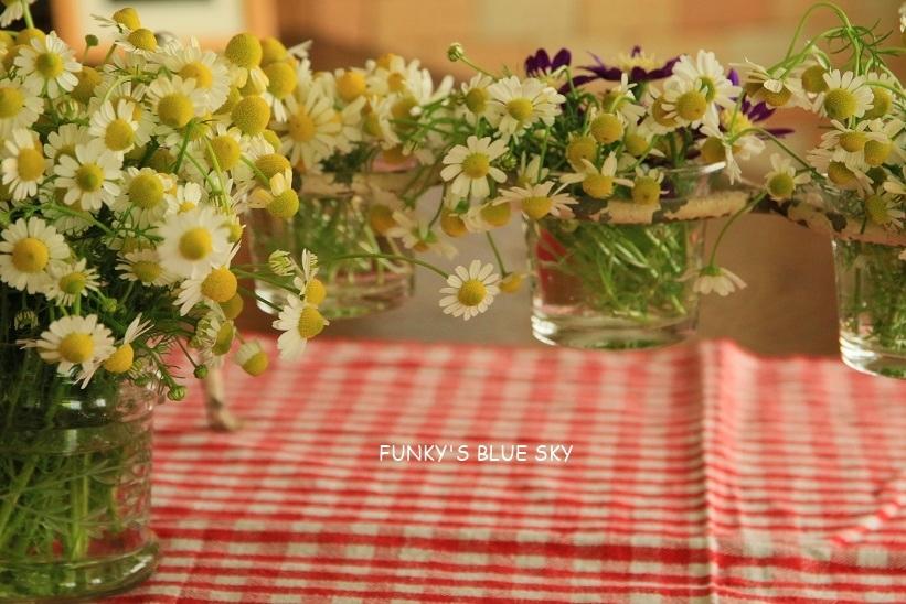 庭の小さなブーケ** (5月22日)_c0145250_11484543.jpg