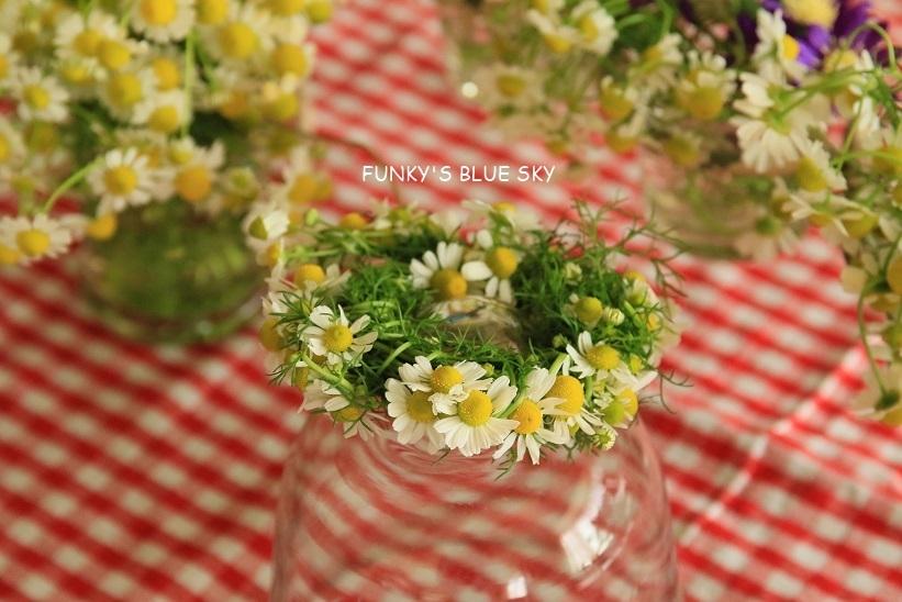 庭の小さなブーケ** (5月22日)_c0145250_11485194.jpg