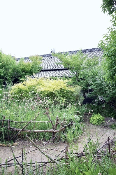 植物時間 波佐見町 西の原_b0014152_21184501.jpeg