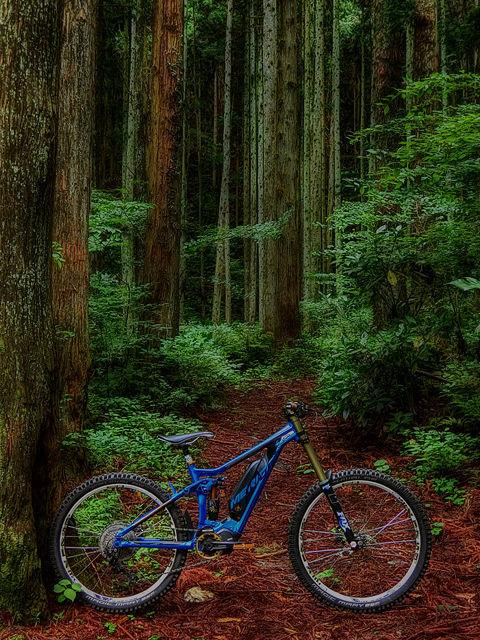 e-mountainbike dreamin XXXIX_b0049658_18020267.jpg