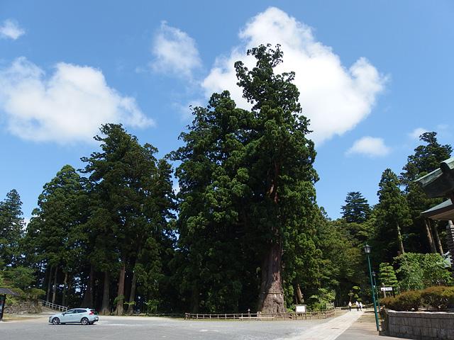 ハスラーで清澄寺。きゃらぶきのために(^^; (6/13)_b0006870_18535349.jpg