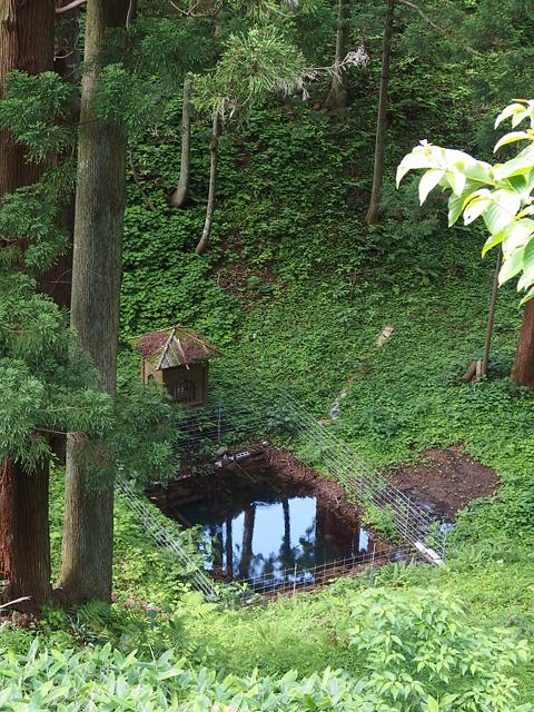 ハスラーで清澄寺。きゃらぶきのために(^^; (6/13)_b0006870_18582336.jpg
