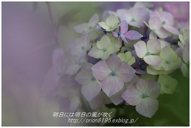 f0361079_18173404.jpg